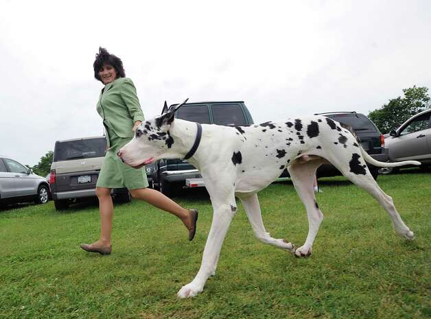 Judy Arsenault of Niantic with her Great Dane named Valentine during the Greenwich Kennel Club 80th Dog Show at Taylor Farm Park in Norwalk, Saturday, June 9, 2012. Photo: Bob Luckey / Greenwich Time