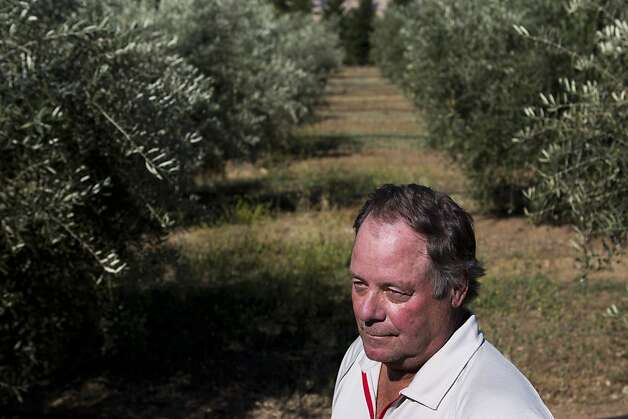 "Robert Martin finishes working in his olive grove on Monday, June 11, 2012 in San Martin, Calif.  Martin is a named plaintiff in a class action lawsuit against Blue Shield of California claiming that the insurance company applied a ""bait and switch"" technique to his family's health insurance policy. Photo: John Sebastian Russo, Special To The Chronicle"
