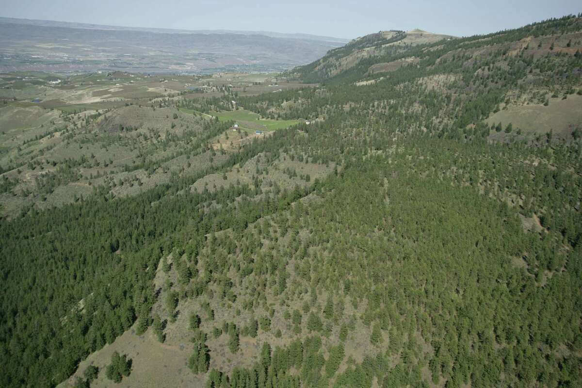 Here's another look of some of the mountain property for sale.