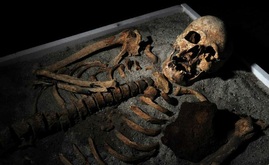 A picture taken on Thursday shows a skeleton with an iron piece in the chest before being exposed at the National History museum in Sofia. The ancient skeleton of a man, pinned down in his grave in order not to turn into a vampire, piqued interest in Bulgaria this week, where vampire tales and rites still keep their bite even nowadays. The 700-year-old skeleton -- unearthed near of a church in the Black Sea town of Sozopol earlier in June -- was stabbed in the chest with an iron rod and had his teeth pulled before being put to rest. (NIKOLAY DOYCHINOV/AFP/GettyImages) Photo: Ap/getty