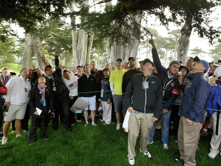 Fans point to a ball thought to be Phil Mickelson's during the first round of the U.S. Open Championship golf tournament Thursday, June 14, 2012, at The Olympic Club in San Francisco. (AP Photo/Eric Risberg) Photo: Eric Risberg