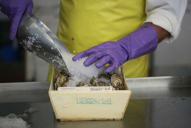 Andy Lai packs a new shipment of beau soleil oysters on ice at Sun Fat Seafood Co. in San Francisco, Calif. Photo: Mike Kepka, The Chronicle