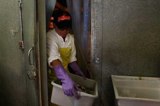 Andy Lai prepares a new shipment of oysters for sale at Sun Fat Seafood Co. in San Francisco, Calif. Photo: Mike Kepka, The Chronicle