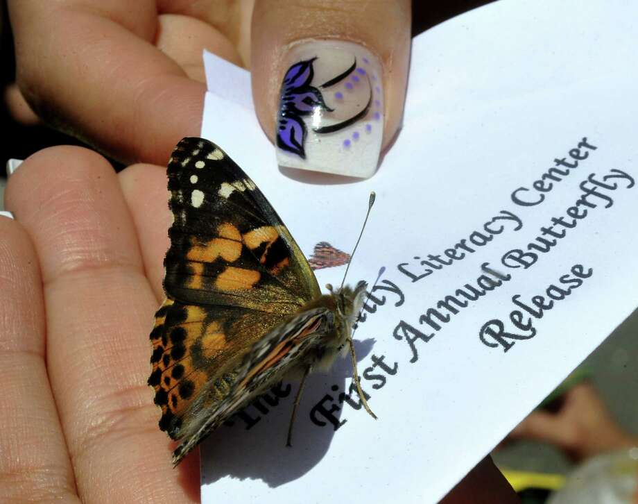 Shown here is one of 100 butterflies released by The Family Literacy Center of Danbury Public Schools as a fundraiser Saturday, June 16, 2012. Photo: Michael Duffy