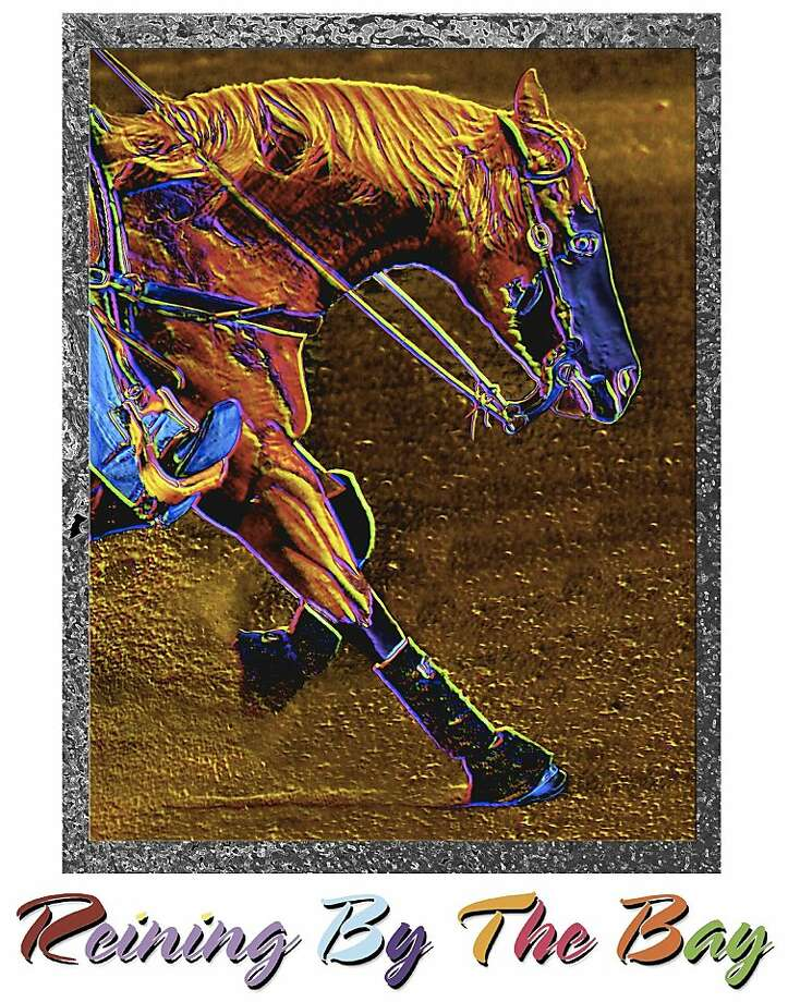 The Peninsula Humane Society/SPCA will reap the benefits from the charity event Reining by the Bay, a July 21-22 competition showcasing top national and international horses and riders. Photo: Reining By The Bay