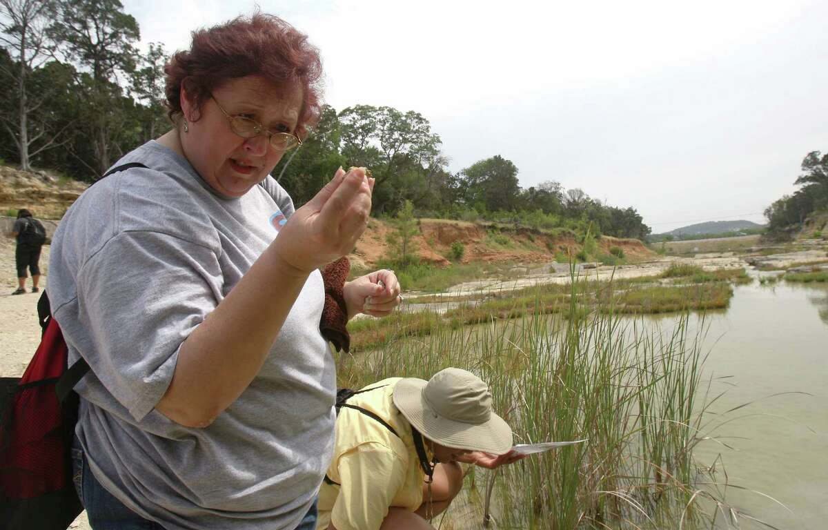 Elizabeth Maddox examines a fossil she found during a hike of the Canyon Lake Gorge Wednesday June 13, 2012. Maddox is a teacher part of the Texas Alliance For Geographic Education workshop. The gorge created by the flooding along the Guadalupe River in 2002 has become a popular tourist destination.