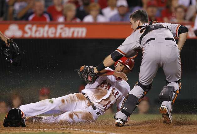 Los Angeles Angels' Maicer Izturis, left, is tagged out out by San Francisco Giants catcher Buster Posey while trying to score on a ball hit by Mike Trout during the fourth inning of a baseball game in Anaheim, Calif., Monday, June 18, 2012. (AP Photo/Chris Carlson) Photo: Chris Carlson, Associated Press