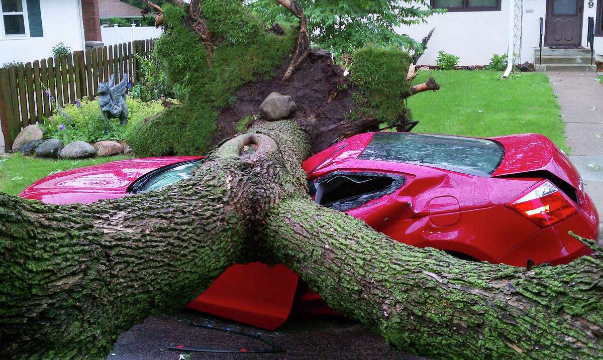 A very large tree, upended by heavy winds during a thunderstorm early Tuesday, crushed a car parked on Galvin Avenuein West St. Paul. Trees are down across the twin cities metro area and roughly 60,000 are without power. (AP Photo/St. Paul Pioneer Press, Jason A. Cook)