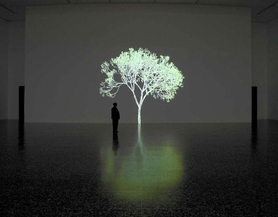 """Jennifer Steinkamp's six-minute """"Mike Kelley"""" video installation captivates a visitor at the Museum of Fine Arts, Houston. The installation is a gift of Isabel Brown Wilson and The Brown Foundation Inc. Photo: Courtesy MFAH"""