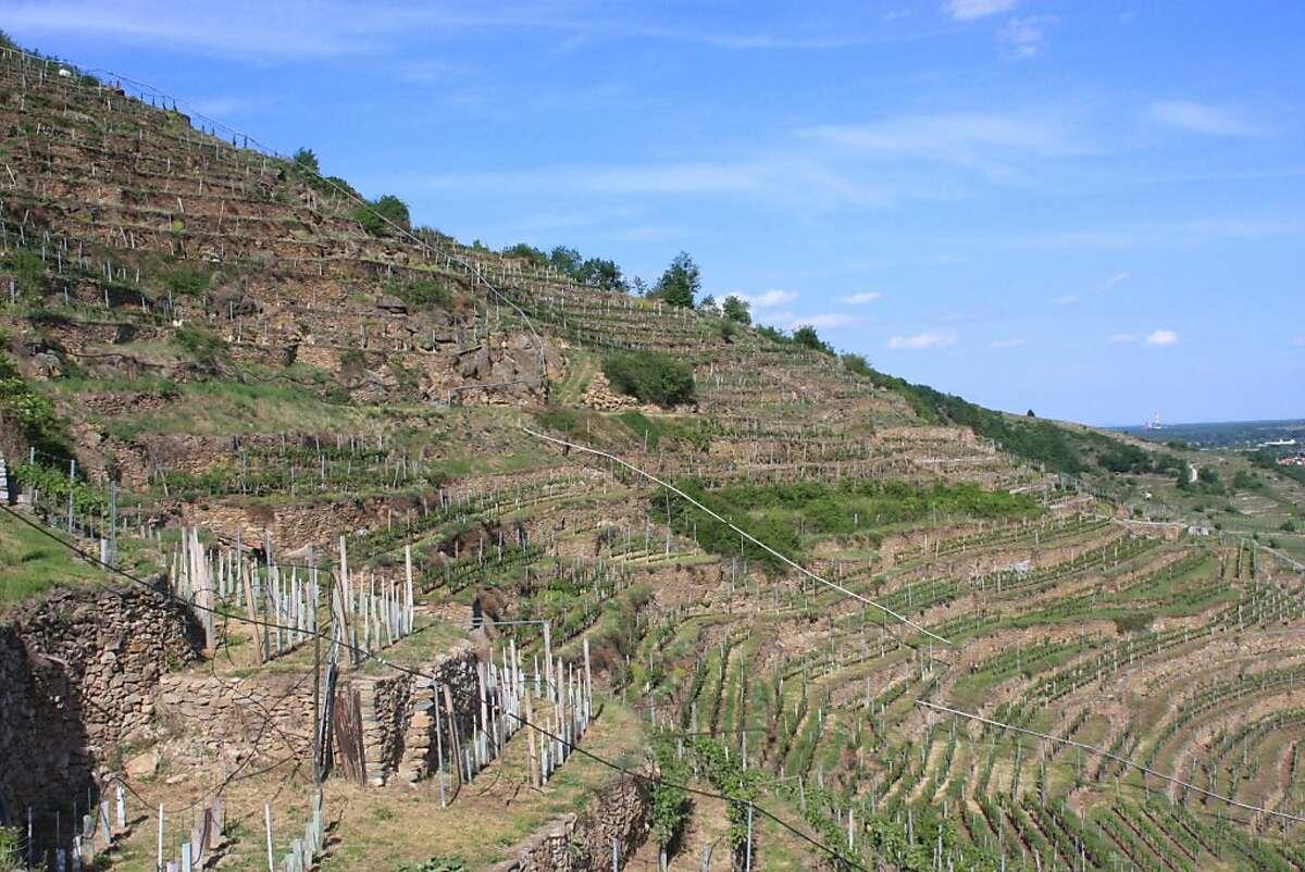 The Loibenberg vineyard, overlooking the town of Unterloiben, in the the Wachau region of Austria.