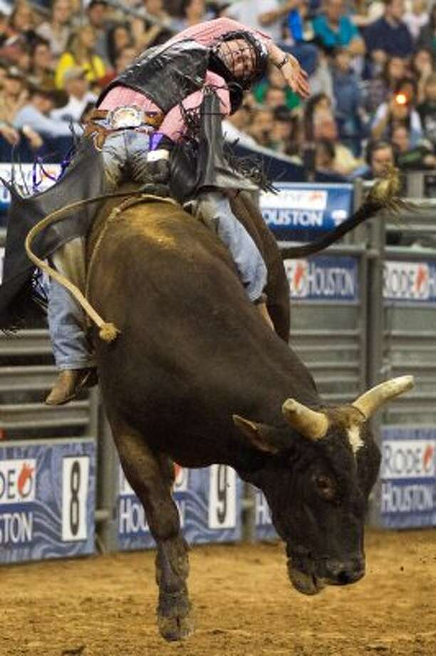 Ride a bull at the rodeo.  (Smiley N. Pool / Houston Chronicle)