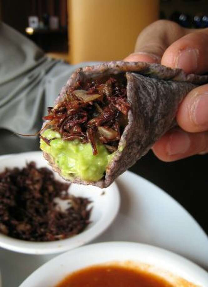 Eat chapulines (grasshoppers) and huitlacoche (corn fungus) at Hugo's.  (Paula Murphy / Hugo)
