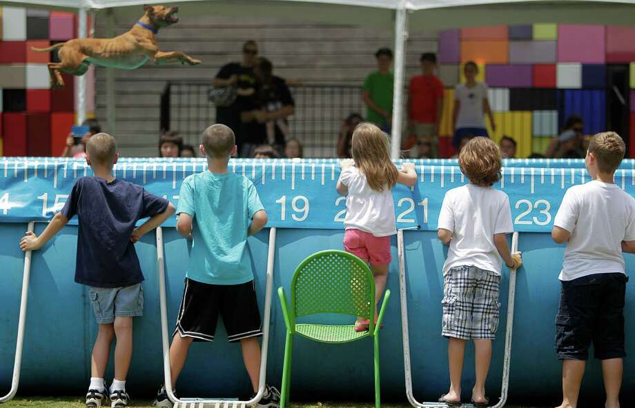 "Viewers stand in the 'splash zone' as ""Justice"", American Pit Bull Terrier trained by Leroy Golden, competes in the Dock Dogs Competition at Discovery Green on Friday, in Houston. Dogs are allowed to sign-up on site June 22-24th for various competitions. Photo: Mayra Beltran, Houston Chronicle / © 2012 Houston Chronicle"