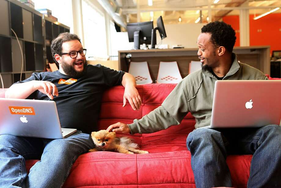 "Left to right--Product manager Dimas Kumets, his twelve year old dog, Widget, and support team Dominic Bannister Jr. at OpenDNS in San Francisco, Calif., on ""Take your Dog to Work Day"" on Friday, June 22, 2012.   Dimas adopted Widget from Muttville, an organization providing rescue, foster, adoption, and hospice for senior dogs. OpenDNS is a provider of Internet security and DNS services. Photo: Liz Hafalia, The Chronicle"