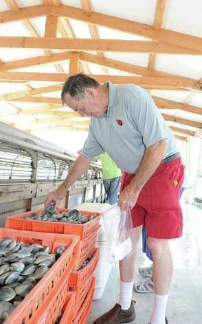 Pat Gavin takes some clams on the Atlantic Clam Farms barge during Experience the Sound Sunday, June 24, 2012. The sixth annual event was held by the Greenwich Shellfish Commission to coincide with the opening of the Bruce Museum's Seaside Center at the Innis Arden Cottage at Greenwich Point. Photo: Helen Neafsey / Greenwich Time