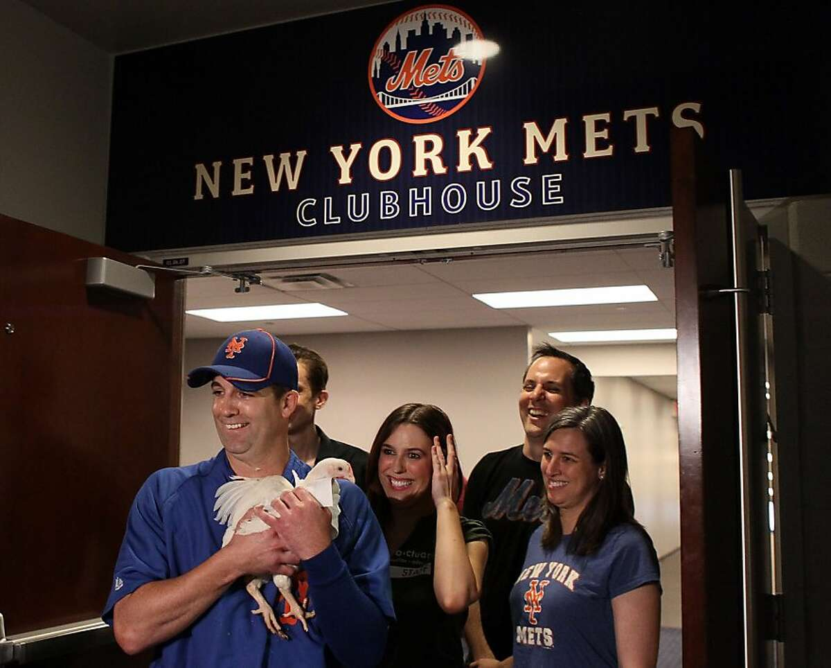 NEW YORK, NY - JUNE 24: Tim Byrdak #40 of the New York Mets, with members of the Farm Sanctuary, holds a chicken named Litte Jerry Seinfeld outside the New York Mets clubhouse before the game against the New York Yankees on June 24, 2012 during interleague play at Citi Field in the Flushing neighborhood of the Queens borough of New York City. Little Jerry Seinfield was donated to the Farm Sanctuary in Watkins Glen, New York. (Photo by Elsa/Getty Images)