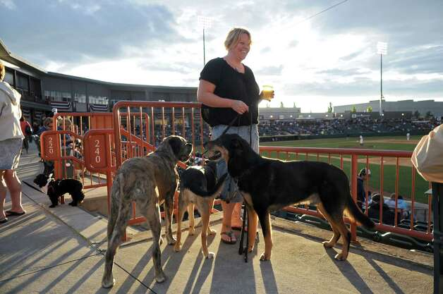 "Sarah LaCroix of Bennington, VT with her dogs Paisley, Moxie, center, and Quest, right,  on ""Bark in the Park"" night during the Tri-City ValleyCats game against the  Lowell Spinners on Monday night June 25, 2012 in Troy, NY.(Philip Kamrass / Times Union) Photo: Philip Kamrass / 00018017A"