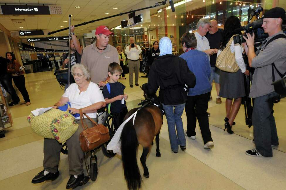 As travelers stare Mona Ramouni, who is blind, walks with local guide horse trainer Dolores Arste of Galway following her arrival at Albany International Airport with Cali her guide horse in Latham N.Y. Tuesday June 26, 2012. (Michael P. Farrell/Times Union)