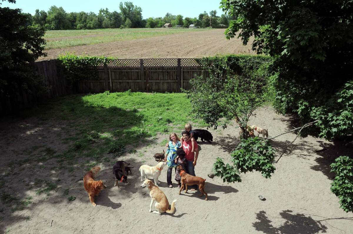 Aenne Grannis, left, and her husband Will Pflaum pose with their children, Lotta, 5, standing and Leo, 3, as they visit with the dogs inside the enclosure at their business the Glencadia Dog Camp on Wednesday, June 27, 2012 in the Town of Stuyvesant, NY. Pflaum and Grannis own and operate the dog camp. (Paul Buckowski / Times Union)