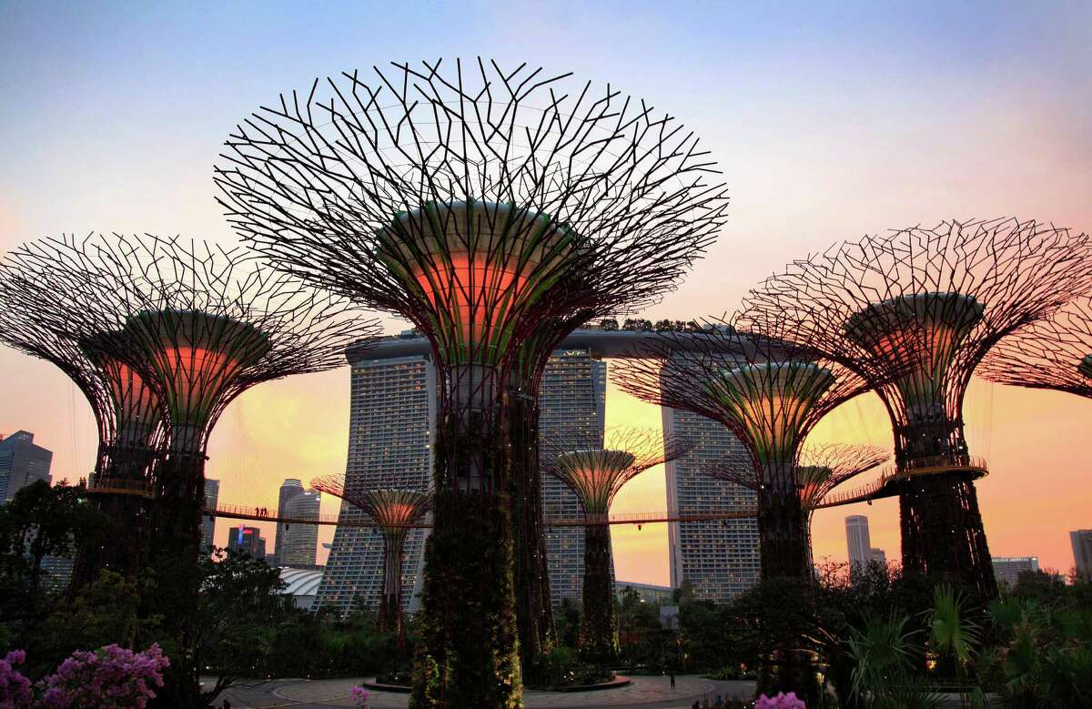 Supertrees are lit against the sunset on Thursday, June 28, 2012 in Singapore. These Supertrees range from 25-50 meters in height and serve as vertical gardens at the Gardens By The Bay just next to Singapore's busy financial district in Singapore. This is part of the city-state's efforts to bring and nurture greenery within the city and capture the essence of Singapore as a tropical city. It opens its doors to the public for the first time Friday.