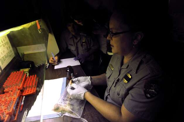 Shelby Walker, biological technician of the National Park Service, takes samples from Kemp's ridley sea turtle eggs at Padre Island National Seashore on Thursday, June 28, 2012. The samples will be checked for, among other things, evidence of oil damage stemming from the 2010 Deepwater Horizon spill in the Gulf of Mexico. Photo: Billy Calzada, San Antonio Express-News / © 2012 San Antonio Express-News