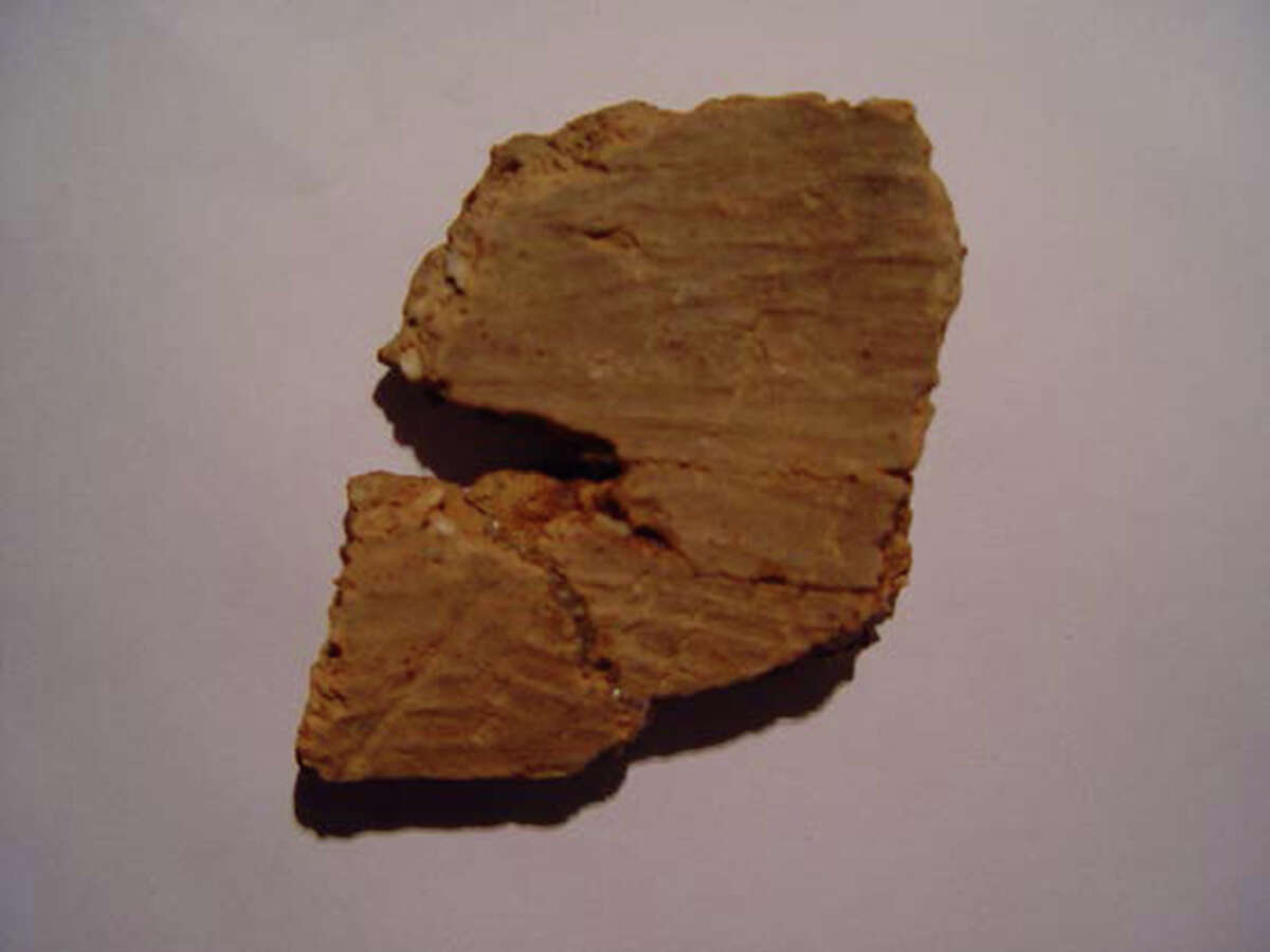 This undated image made available by Science/AAAS shows one of the pottery fragments recovered from a layer dating approximately 20,000 years old in the Xianrendong cave in south China?'s Jiangxi province. The discovery makes them the oldest known pottery in the world, archaeologists say. The findings, which will appear in the journal Science on Friday, June 29, 2012 add to recent efforts that have dated pottery piles in east Asia to more than 15,000 years ago, refuting conventional theories that the invention of pottery correlates to the period about 10,000 years ago when humans moved from being hunter/gathers to farming. (AP Photo/Science/AAAS)