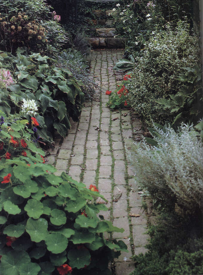 A brick walkway allows water to seep into the soil.