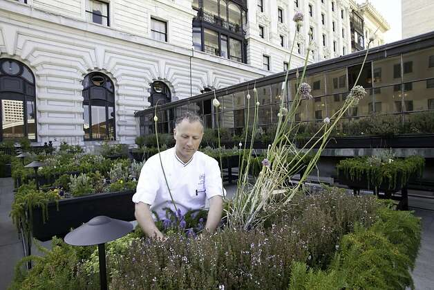 Gardenista featured Chef J.W. Foster and his rooftop garden at the Fairmont Hotel in San Francisco. Photo: Courtesy Gardenista