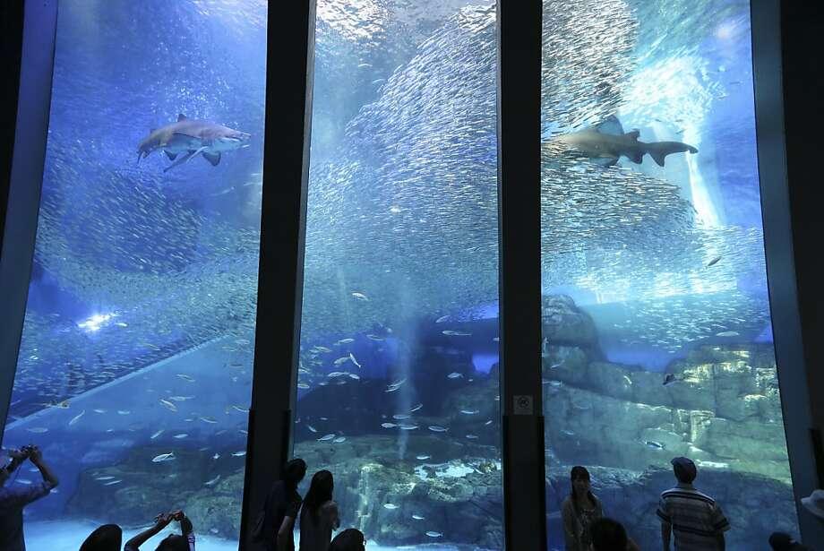 People visit at the Hakkeijima Sea Paradise aquarium-amusement park complex in Yokohama, southwest of Tokyo, Saturday, June 30, 2012.(AP Photo/Itsuo Inouye) Photo: Itsuo Inouye, Associated Press