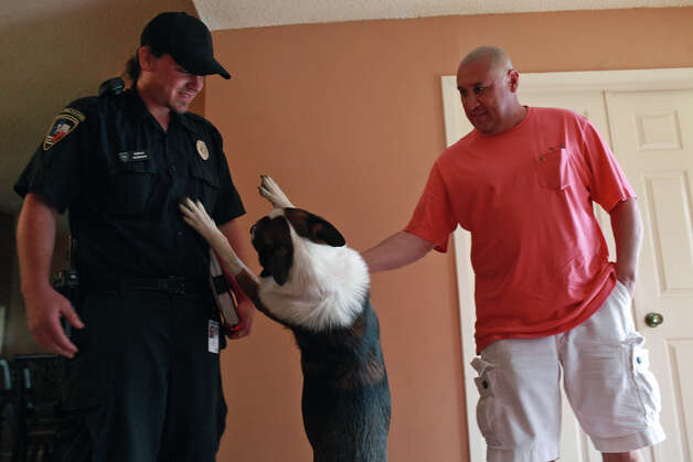 Animal Care Services Officer Joel Skidmore is greeted by Max, the dog owned by Jesus Ramon, right, who was attacked along with Ramon by a pit bull outside Ramon's home in San Antonio last year, at their home on Thursday, Feb. 2, 2012. Photo: Lisa Krantz, SAN ANTONIO EXPRESS-NEWS / SAN ANTONIO EXPRESS-NEWS