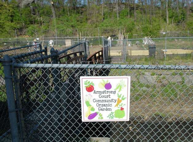 Opening day of the Armstrong Court Community Garden in Chickahominy this spring. Photo: Bob Luckey / Greenwich Time