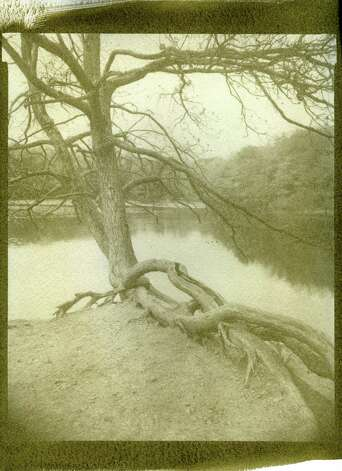 "A reception for photographer MaryEllen Hendricks takes place at the Westport Public Library on Friday, July 13. Above is ""Tree, Mill Pond."" Photo: Contributed Photo"