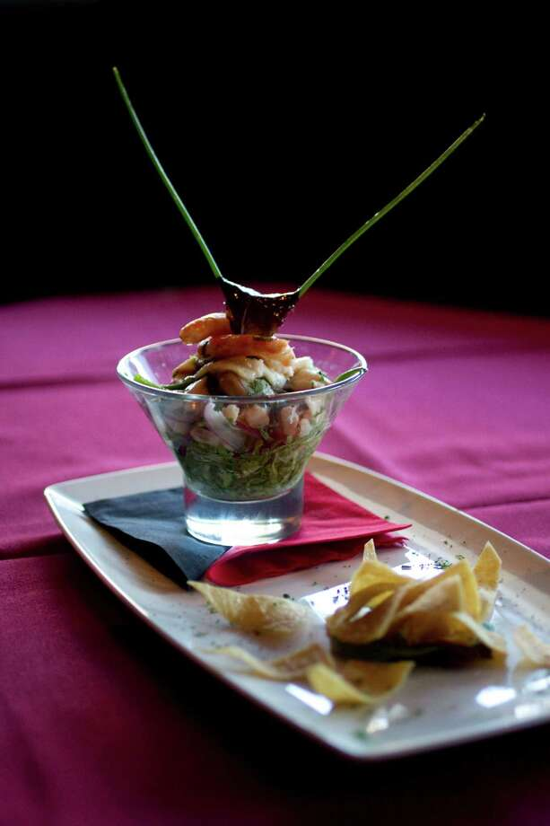 Ceviche at the Galleria neighborhood restaurant Tango and Malbec restaurant and lounge that specializes in South American cuisine with emphasis on the flavors of Argentina and Uruguay Thursday, Dec. 9, 2010, in Houston. ( Johnny Hanson / Houston Chronicle ) Photo: Johnny Hanson / Houston Chronicle