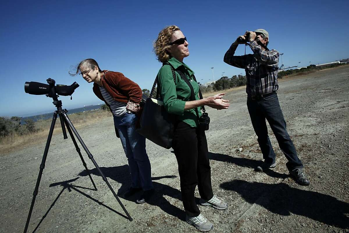 Noreen Weeden, center, Ilana DeBare, left, and Eddie Bartley, right, all with the Golden Gate Audubon Society, look for a pair of ospreys nesting in a crane at the end of Pier 80 in San Francisco, Calif., Tuesday, July 3, 2012. The osprey nest is the only one known in the area.