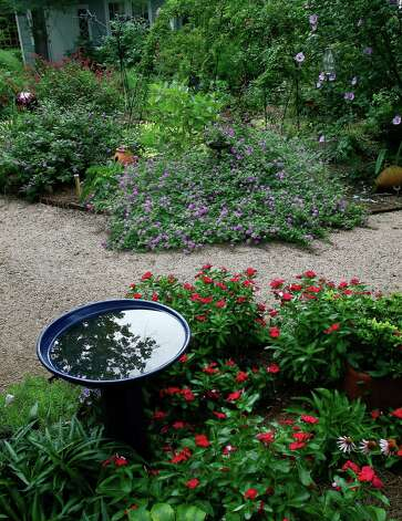 Trailing lavender lantana and Cora vincas grow on opposite sides of a sunny path. Photo: John Everett / John Everett