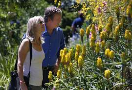 Ron and Shannon Estill, of Santa Rosa, visit the Western Hills Garden in Occidental, Calif. on Saturday, July 7, 2012. Tim and Chris Szybalski recently reopened the three-acre garden after rescuing the property from foreclosure.