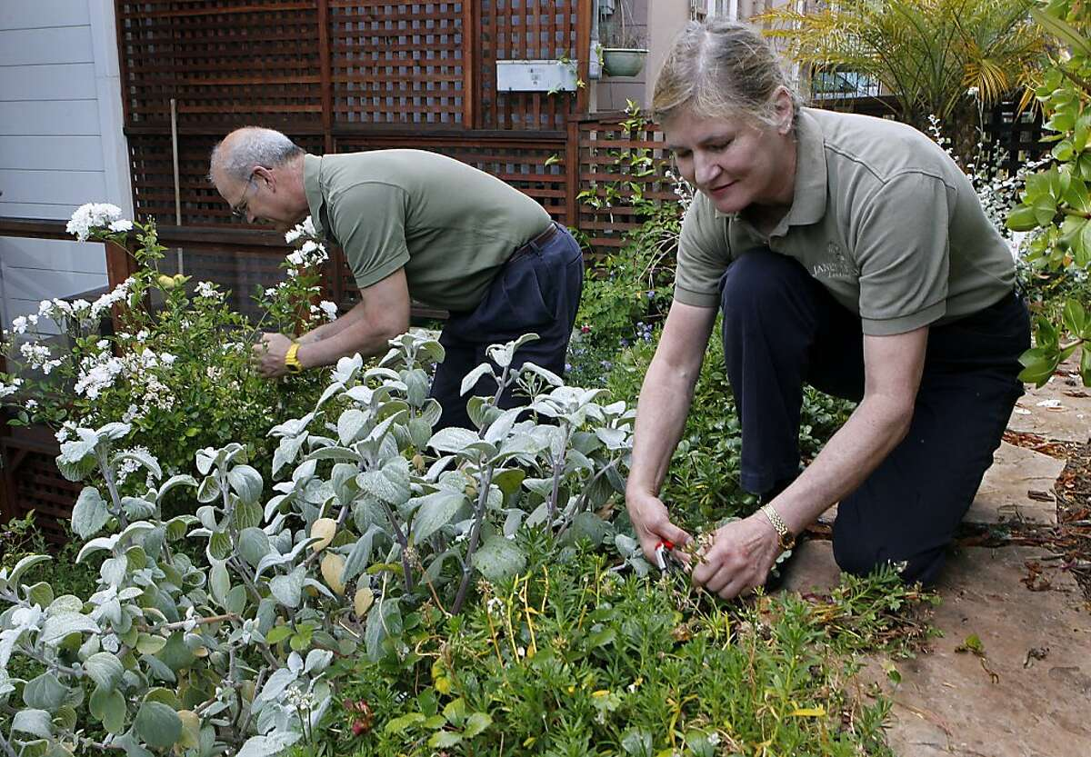 Janet Moyer and Michael Hofman work on a Mission home garden in San Francisco on Friday.