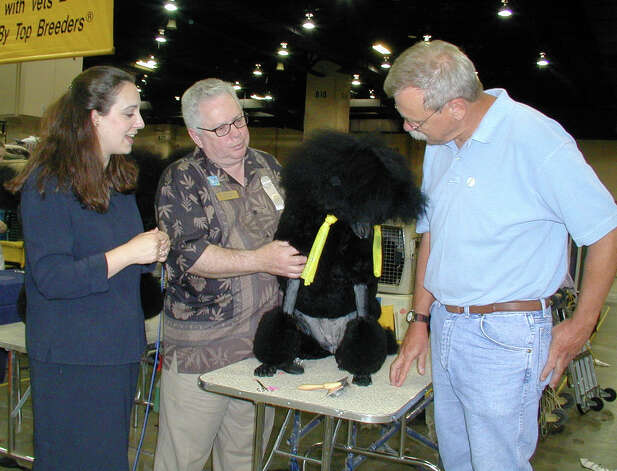 Mellisa Winslow, show chairman Norman Gruber and Mark Unger check out a Poodle at the River City Cluster of Dog Shows on July 13, 2001 at the Convention Center. Photo: Leland A. Outz, For The Express-News