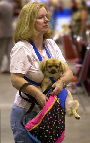 Donna Etchison of Tulsa, Okla., uses a Pet Pouch to carry her dog Future, a Tibetan Spaniel, around the River City Cluster of Dog Shows on July 12, 2002 at the Convention Center. Etchison bought the carrier from a show vendor. Photo: William Luther, San Antonio Express-News