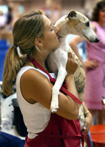 Katie Shepard hugs Jeep the Whippet after winning Best in Show at the River City Cluster of Dog Shows on July 13, 2003 at the Convention Center. Photo: San Antonio Express-News File Photo / EXPRESS-NEWS