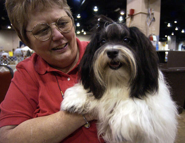 A breeder holds her dog at the River City Cluster of Dog Shows on July 7, 2004 at the Convention Center. Photo: John Davenport, San Antonio Express-News / SAN ANTONIO EXPRESS-NEWS