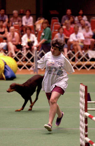 Donna Rock runs with Annie the Doberman Pinscher on the agility course at the River City Cluster of Dog Shows on July 10, 2004 at the Convention Center. Photo: San Antonio Express-News File Photo / SAN ANTONIO EXPRESS-NEWS