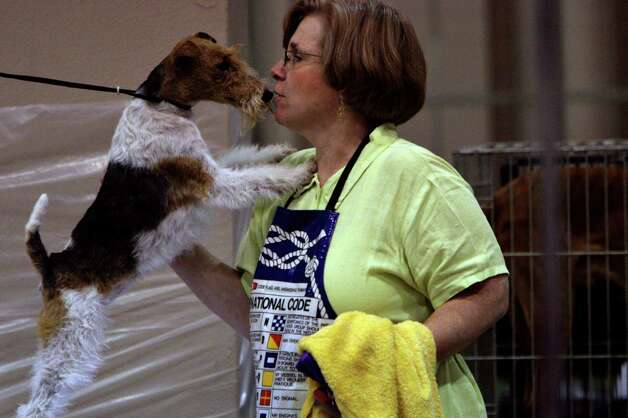 Elizabeth Reinhardt of Lafayette, La., gets a kiss from her Wire Fox Terrier named Briteworks Southern Starlite at the River City Cluster of Dog Shows on July 16, 2005 at the Convention Center. Photo: San Antonio Express-News File Photo / SAN ANTONIO EXPRESS-NEWS