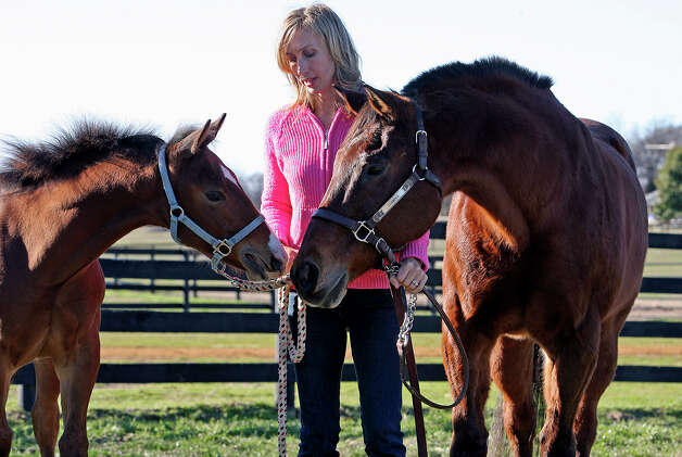 Clayton (left) the clone of Scamper (right)  exhibits the same fiesty spirit as the older horse as the two meet on the ranch owned by Charmayne James on Jan. 25, 2007. Photo: Tom Reel, San Antonio Express-News / SAN ANTONIO EXPRESS-NEWS