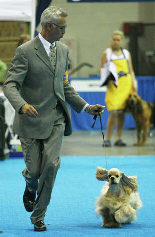 Mike Pitts shows his dog, Dylan, at the River City Cluster of Dog Shows on July 11, 2007 at the Convention Center. Photo: San Antonio Express-News File Photo / SAN ANTONIO EXPRESS NEWS