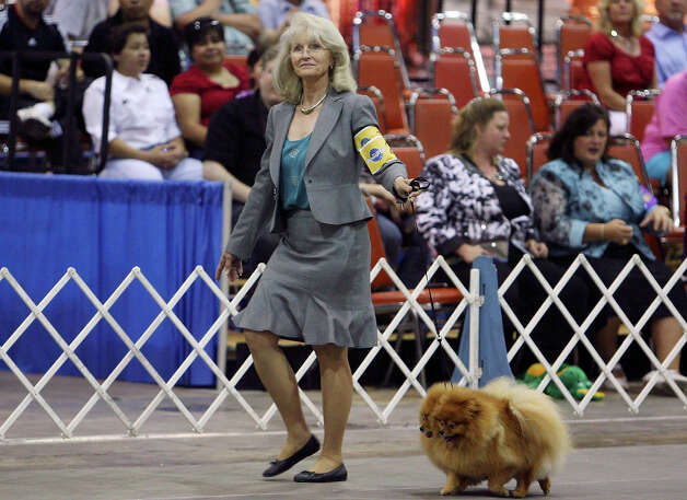 Owner/handler Nannette Walker shows her Pomeranians Cherie and Chucky at the River City Cluster of Dog Shows on July 11, 2009 at the Convention Center. Photo: Edward A. Ornelas, San Antonio Express-News / eaornelas@express-news.net