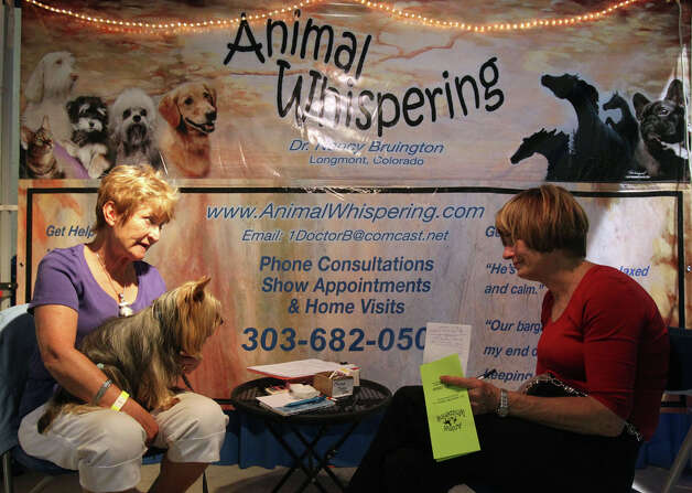 "Nancy Bruington (left), a self-described ""animal communicator,"" speaks with Leslie Manning about her Silky Terrier (in Bruington's lap) at the River City Cluster of Dog Shows on July 14, 2011 at the Freeman Exposition Hall. Bruington's booth is one of several attractions at the dog show for spectators to see as well as the competitions. Photo: John Davenport, San Antonio Express-News / SAN ANTONIO EXPRESS-NEWS (Photo can be sold to the public)"