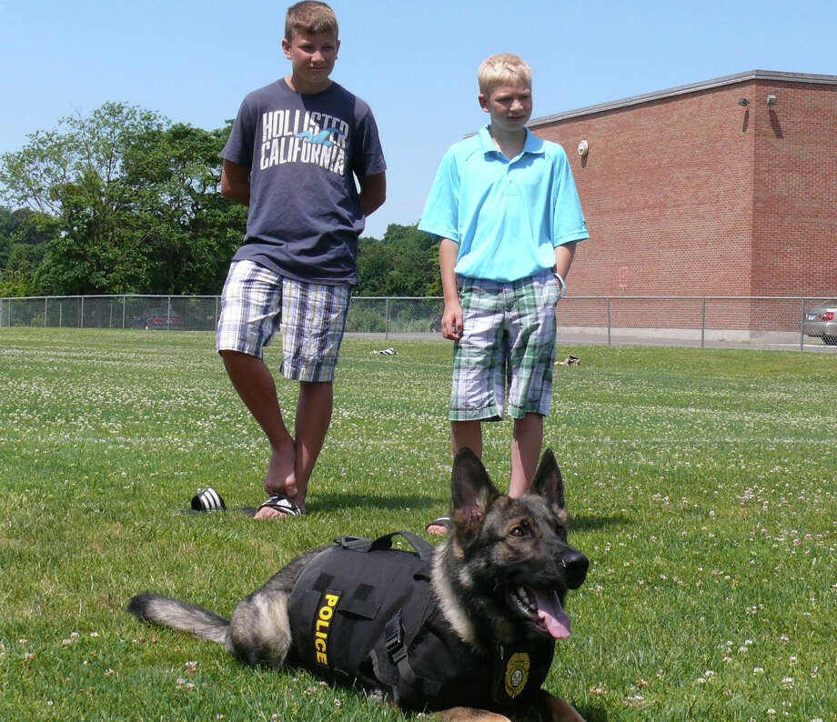 William Sarro, 12, and Anthony Sarro, 9, of North Attleborough, Mass., pose with Fairfield's K-9, Ruger. Ruger is is sporting a new protective vest thanks to a donation made by the Sarro-Truken family. Photo: Genevieve Reilly / Fairfield Citizen