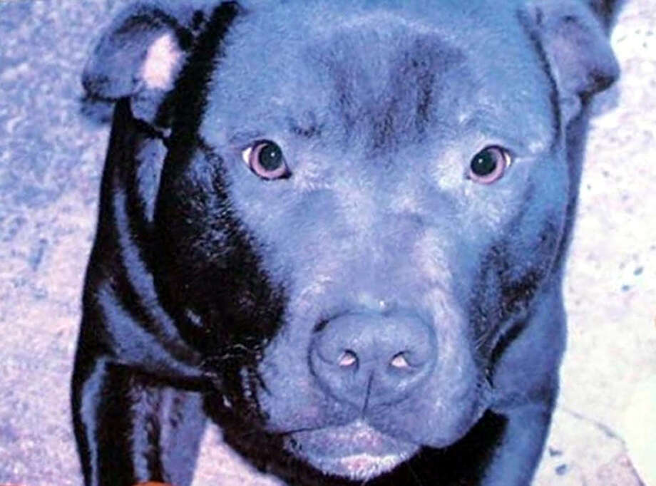 Lennox inspired a legal fight and protests on both sides of the Atlantic. / PA