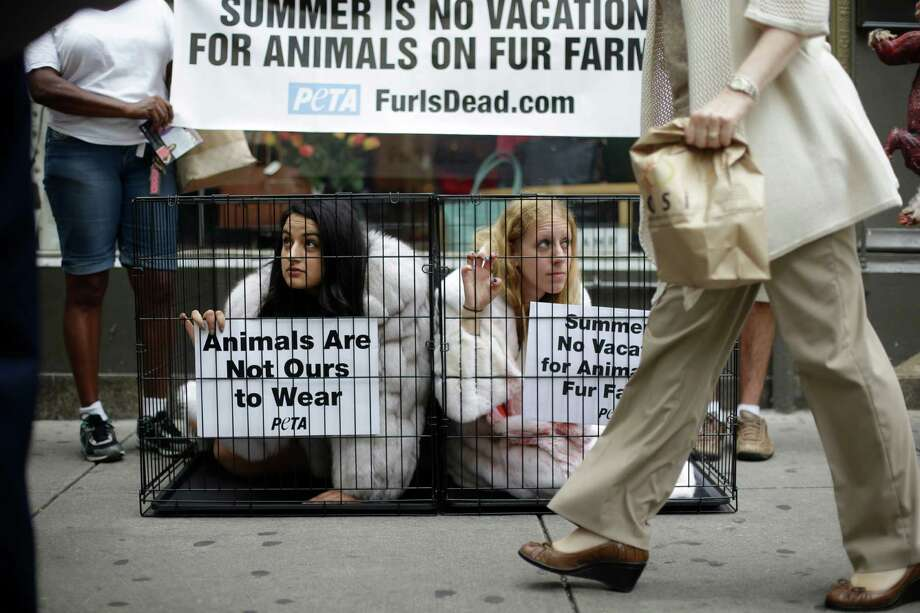 A pedestrian walks past People for the Ethical Treatment of Animals (PETA) members Alejandra Mendoza, left, and Ariela Rubin, as they stage a protest from cages outside Jacques Ferber Furs, Wednesday, July 11, 2012, in Philadelphia. The animal-rights organization is known for its staunch position against the use of fur, leather, wool, and other animal-based clothing.  (AP Photo/Matt Rourke) Photo: Matt Rourke